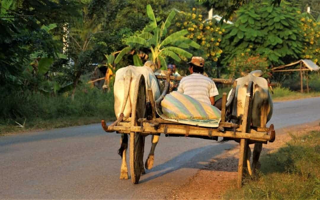 Battambang Travel Guide 2017