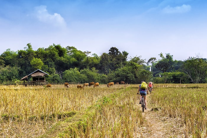 Kampot Unique Bike Tours