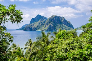 Mad Monkey Hostel El Nido