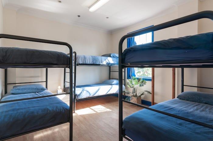 6 Bed Mixed Dorm Apartment