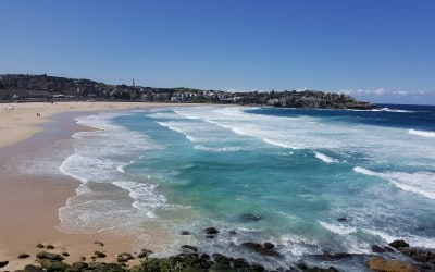 Bondi Beach: Hotels, Apartments, Hostels, and More for Every Budget