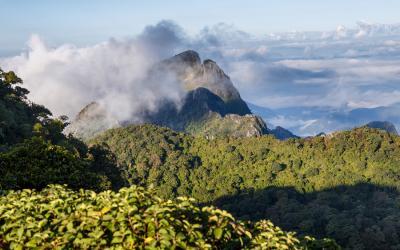 Chiang Mai Trekking & Adventure