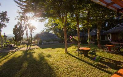 Tranquil Yoga Gardens