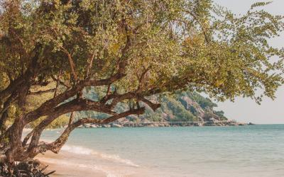 Koh Phangan: a Complete Guide to this Thai Island